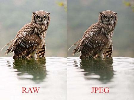 формат RAW и JPEG