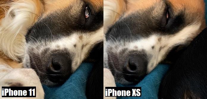 сравнение фото на iphone xs и iphone 11 (2)